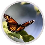 Butterfly -  Soaking Up The Sun Round Beach Towel
