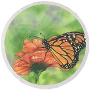 Butterfly Round Beach Towel by Troy Levesque