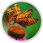 Round Beach Towel featuring the photograph Butterfly Twins by Christina Rollo