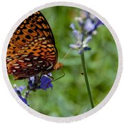 Butterfly Visit Round Beach Towel