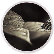 Butterfly Warm Tone Round Beach Towel