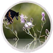 Round Beach Towel featuring the photograph Butterfly With Reflection by Eleanor Abramson