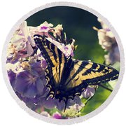 Round Beach Towel featuring the photograph Butterfly by Yulia Kazansky