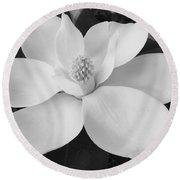 B W Magnolia Blossom Round Beach Towel by D Hackett