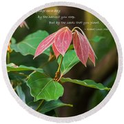 Round Beach Towel featuring the photograph By The Seeds That You Plant by Jordan Blackstone