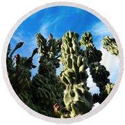 Round Beach Towel featuring the photograph Cactus 1 by Mariusz Kula