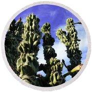 Cactus 2 Round Beach Towel
