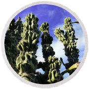 Round Beach Towel featuring the photograph Cactus 2 by Mariusz Kula