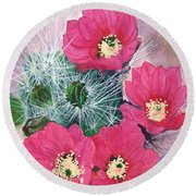 Cactus Flowers I Round Beach Towel by Mike Robles