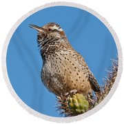 Cactus Wren Singing Round Beach Towel