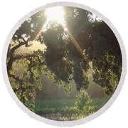 Round Beach Towel featuring the photograph Cali Lite by Shawn Marlow