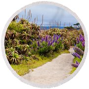 California Coastline Path Round Beach Towel by Melinda Ledsome