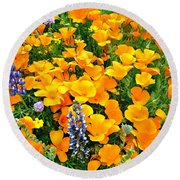 California Poppies And Betham Lupines Southern California Round Beach Towel