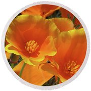 California Poppies Round Beach Towel