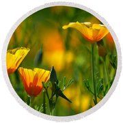 California Poppies Round Beach Towel by Deb Halloran