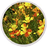 California Poppies Round Beach Towel by Ed  Riche