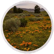 California Poppies In The Antelope Valley Round Beach Towel by Nina Prommer