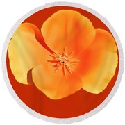 California Poppy Painting Round Beach Towel