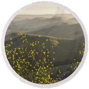 Round Beach Towel featuring the photograph California Wildflowers by Steven Sparks
