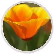 Round Beach Towel featuring the photograph Californian Poppy by Joy Watson