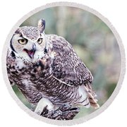 Round Beach Towel featuring the photograph Call Of The Owl by Dan McManus