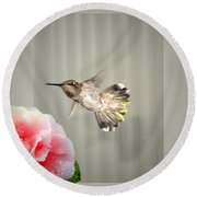Round Beach Towel featuring the photograph Camellia And Hummer by Joyce Dickens