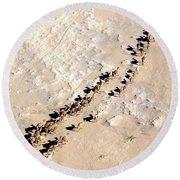 Camels Walking In Desert Round Beach Towel