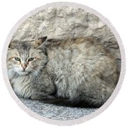 Camo Cat Round Beach Towel