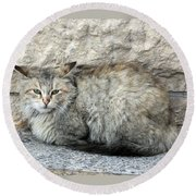 Camo Cat Round Beach Towel
