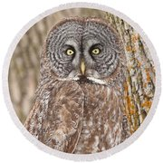 Camouflage-an Owl's Best Friend Round Beach Towel