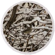 Camouflaged Thrush Round Beach Towel