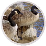Round Beach Towel featuring the photograph Canada Geese by Joseph Skompski