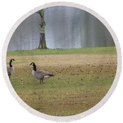 Canadian Geese Tourists Round Beach Towel by Joseph Baril