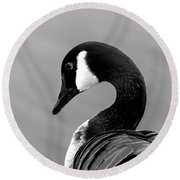 Round Beach Towel featuring the photograph Canadian Goose In Black And White by Frank Bright