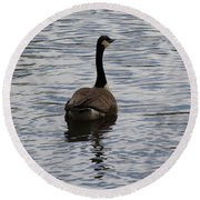 Canadian Goose On The Water Round Beach Towel