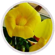 Canario Flower Round Beach Towel