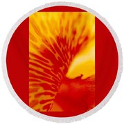 Round Beach Towel featuring the photograph Canna Lilly by Michael Hoard