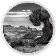 Canyon And Twisted Pine Round Beach Towel by Lori Grimmett