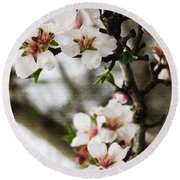 Capay Valley Almond Blossom Round Beach Towel by Jennifer Muller