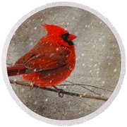 Cardinal In Snow Round Beach Towel