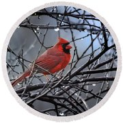 Cardinal In The Rain   Round Beach Towel