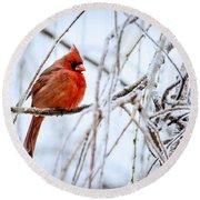Cardinal In The Willow IIi Round Beach Towel