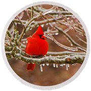 Cardinal Round Beach Towel by Mary Carol Story