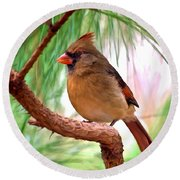 Cardinal Round Beach Towel by Bob and Nadine Johnston