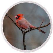 Cardinal Sing Round Beach Towel