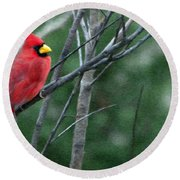 Cardinal West Round Beach Towel