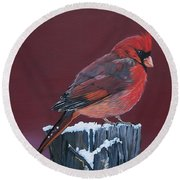 Cardinal Winter Songbird Round Beach Towel