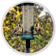 Carduelis Carduelis 'goldfinch' Round Beach Towel