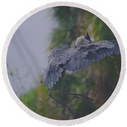 Round Beach Towel featuring the photograph Careful Landing by Dennis Baswell