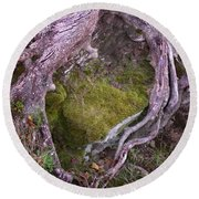 Round Beach Towel featuring the photograph Caressing The Moss by Gary Slawsky